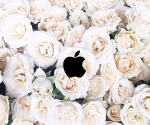 apple, flowers, and tumblr image