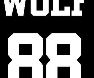 exo, kpop, and wolf image