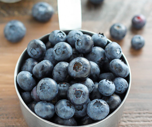 blueberry and breakfast image