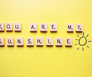 sunshine, yellow, and sun image