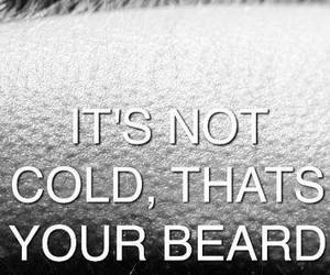 beard, cold, and cool image