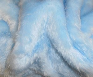 blue, fur, and pink image