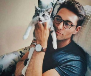 cat, handsome, and Hot image