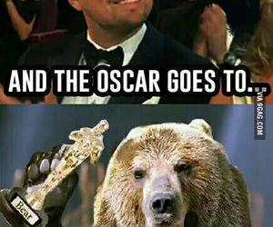 bear, funny, and Leonardo di Caprio image