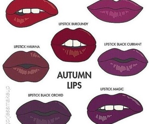 autumn, beauty, and lips image
