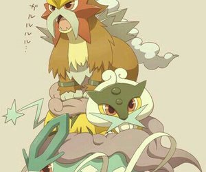 pokemon, entei, and suicune image