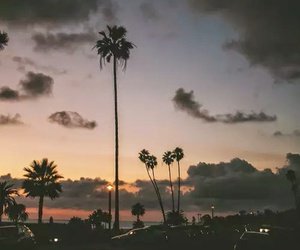 sunset, summer, and palm trees image