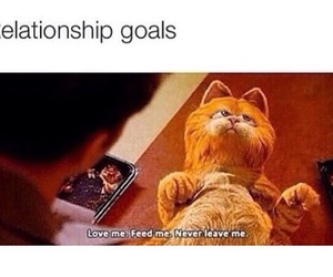 funny, garfield, and Relationship image