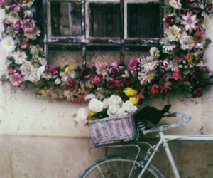 flowers, Dream, and vintage image