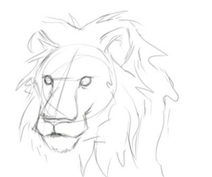 animal, drawing, and lion image