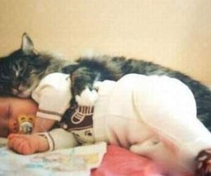 animal, baby, and hug image