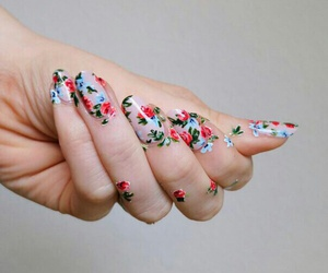 beauty, hand, and flowers image