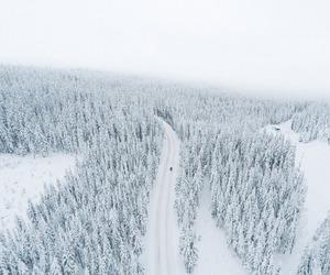 landscape image
