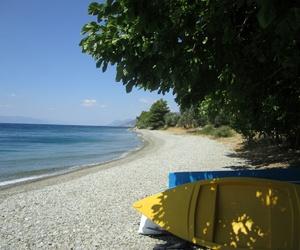 Greece and kalamata image