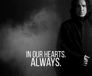 alan, alan rickman, and hogwarts image
