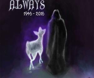 always, harry potter, and alan rickman image