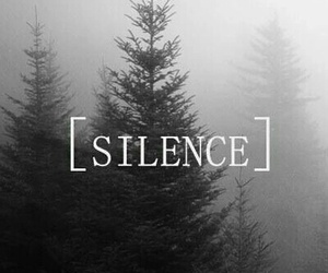 silence, dark, and forest image