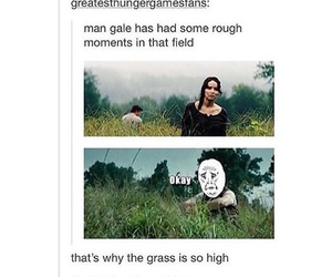 funny, the hunger games, and thg image