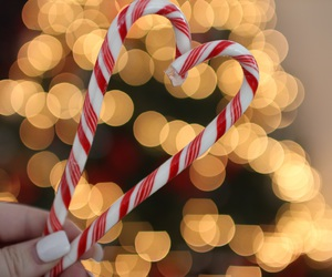 candy canes, christmas, and tumblr image