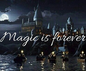 harrypotter and magicisforever image