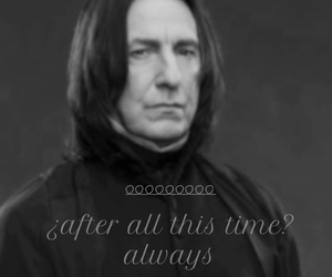 alan rickman, easel, and harry potter image