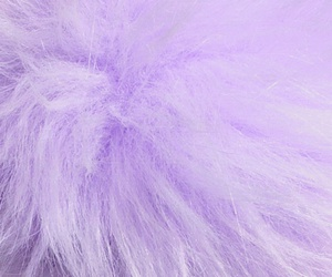 purple and soft image
