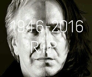 always, harry potter, and rip image