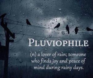 rain, pluviophile, and peace image