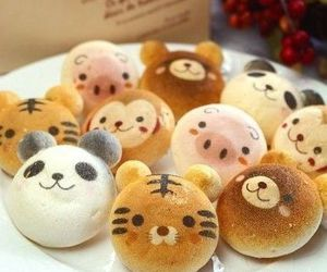 cute, food, and animals image