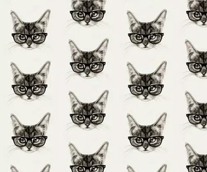 cat, pattern, and glasses image
