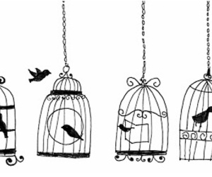 bird and cage image