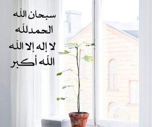 @الله, @arab, and @arabs image