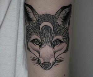 animal, black, and crescent image