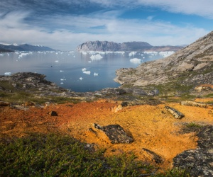 grass, greenland, and ice image