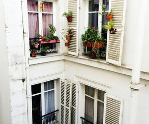 flowers, white, and windows image