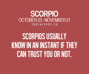 astrology, horoscope, and scorpio image