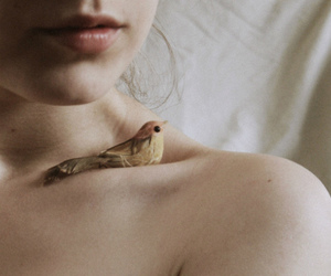 bird, girl, and skin image