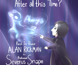 alan rickman and harry potter image