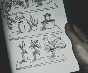book, draw, and plants image