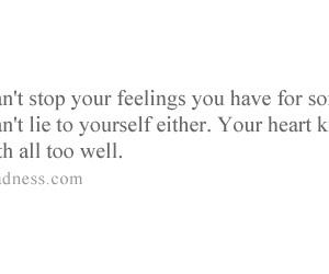 feelings, heart, and love image