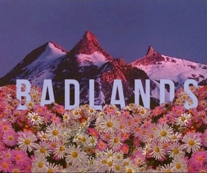 badlands and halsey image