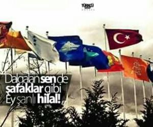 turk, turkiye, and vatan image