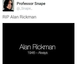 alan rickman, always, and harry potter image