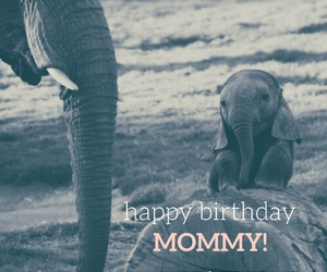 birthday, happy, and mother image