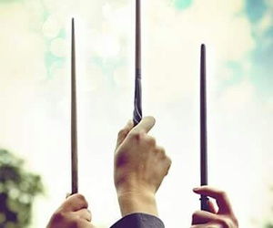 harry potter, hermione, and wands image