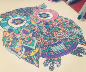 art, color, and owl image