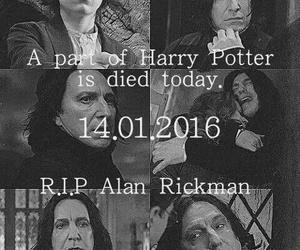 harry potter, alan rickman, and rip image