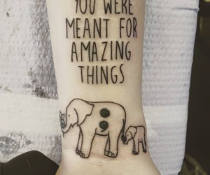 are, black, and elephant image