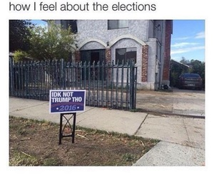 funny, election, and true image