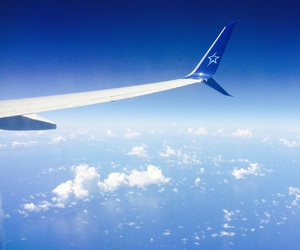 plane, traveling, and airtransat image